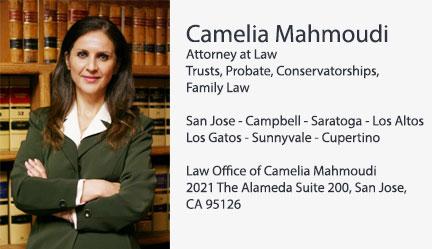Camelia Mahmoudi  کاملیا محمودی